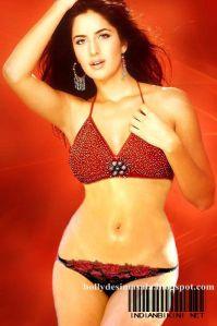 Birthday special: Katrina Kaif Hottest Bikini Photos 2